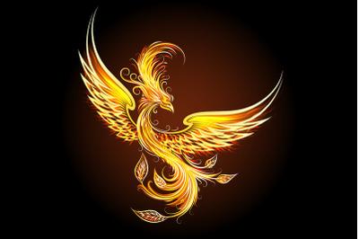 Fire Bird Phoenix on Black Background