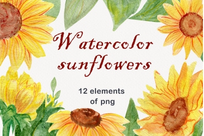 Watercolor floral sunflower clipart png
