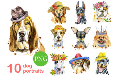 10 watercolor dog portraits. Set 15