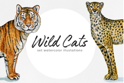 Watercolor set cute wild cats illustrations. 6 wild cats.