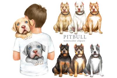 Pitbull watercolor clipart. Dog clipart, digital print, dog print