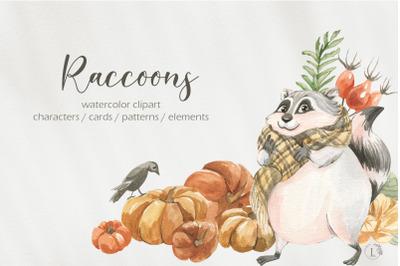 Cute autumn raccoons