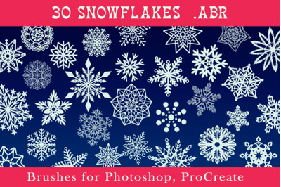Snowflakes Brushes for Photoshop, ProCreate .ABR