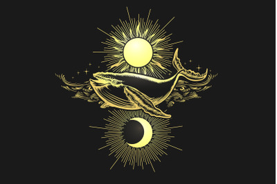 Hand Drawn Sun and Moon and Whale on Black background