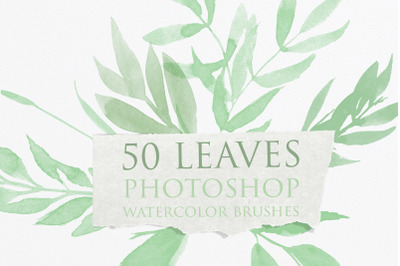 Leaves Photoshop Watercolor Brushes