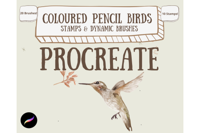Coloured Pencil Birds Toolkit for Procreate- 30 Brushes/Stamps