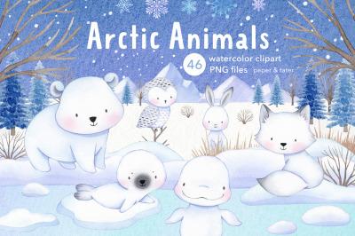 Arctic Animals Watercolor Clipart, Winter Clip Art, Polar Bear PNG