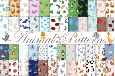 Animals pattern. Baby. Birthday. Procreate . Digital paper.
