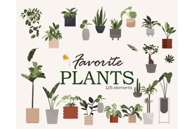Home plants, Vector clipart, Gardening Download, Snake Plant