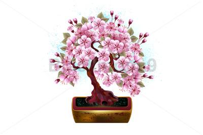 Bonsai Pink Japanese Cherry