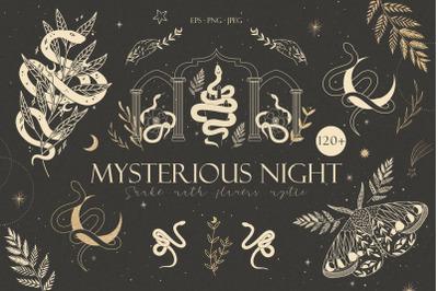 120+ Mysterious night