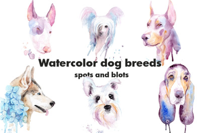 Watercolor dog breeds. Splashes and blots