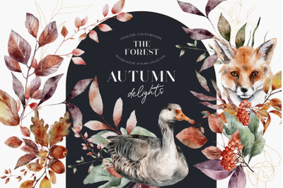 Autumn Watercolor Forest animals Birds Leaves Compositions PNG