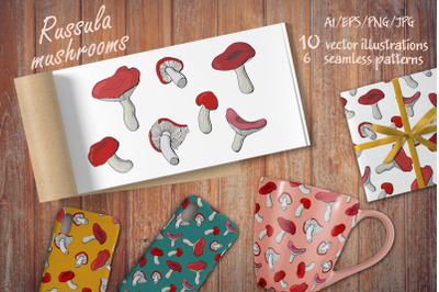 Russula mushrooms - collection