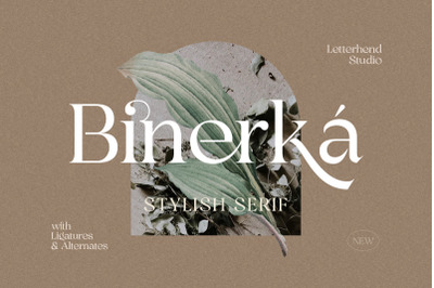 Binerka - Stylish Serif Font