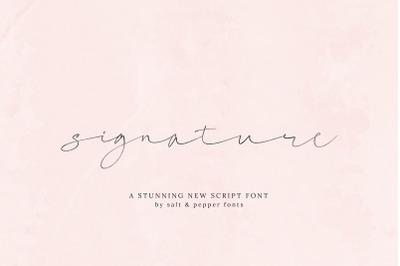 Signature Script Font (Cursive Fonts, Handwritten Fonts, Calligraphy)