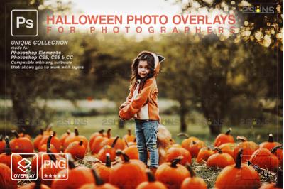 Halloween overlay & Halloween pumpkin overlay: Photoshop overlay,
