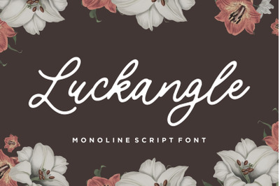 Luckangle Monoline Script Font
