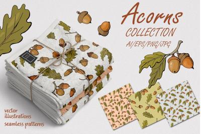 Acorns - collection