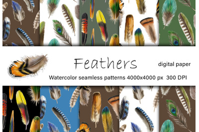 Feathers watercolor digital paper. Feathers seamless patterns
