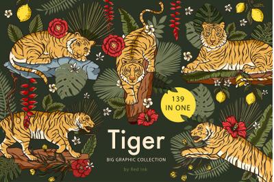 Tiger illustration. Graphic bundle.