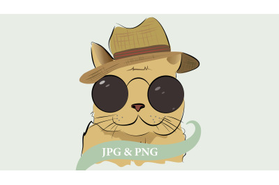 Cute cat with hat and sunglasses.