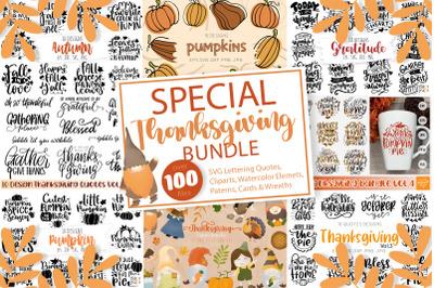 Special Thanksgiving Bundle
