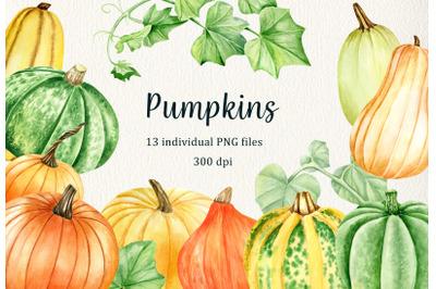 Watercolor Pumpking Clipart set. Hand drawn thanksgiving vegetables