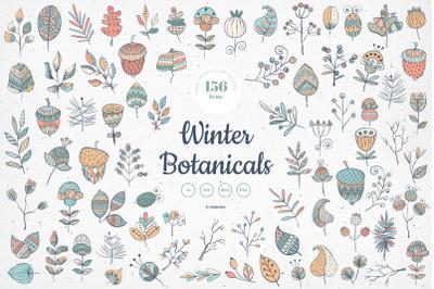 Winter Botanicals Vector Illustrations