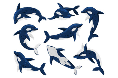 Cartoon orca whales, sea predator killer whale. Sea creature orca whal