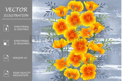 California Poppy on Gray Background