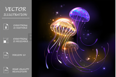 Three Glowing Jellyfish