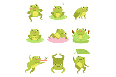 Cute frogs. Lotus flowers and funny cartoon toad character, different