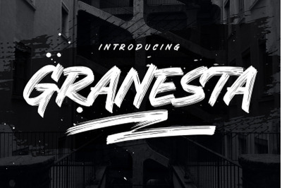 Granesta - Freestyle Brush