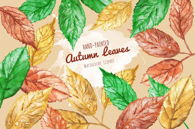 Leaves - Hand Painted Watercolor Clipart