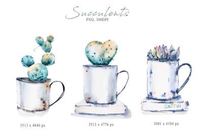 Watercolor potted succulent sublimation / cactus clipart
