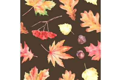Leaf fall watercolor seamless pattern. Maple, oak, birch leaves.