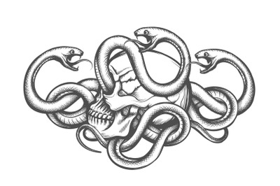 Human Skull and Snakes Tattoo