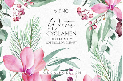 Watercolor pink Christmas flowers clipart, Winter greenery cyclamen floral png,  Winter flowers for baby shower and Christmas diy 075