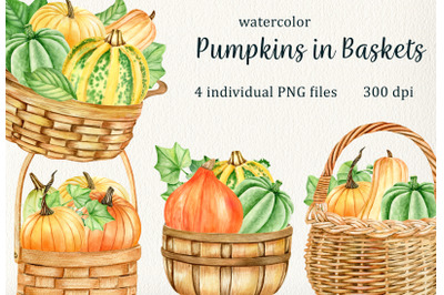 Watercolor Pumpking in Baskets Clipart PNG. Thanksgiving vegetables
