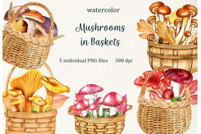 Watercolor Mushrooms in Basket Clipart, Forest Fungi, Autumn Mushrooms