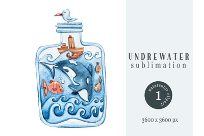 Watercolor nautical sublimation / clipart. Orca illustration