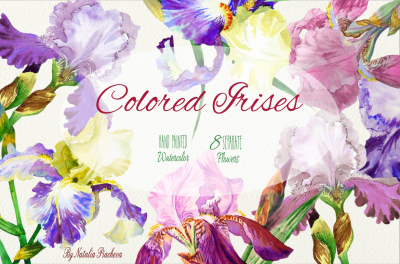 Colored Irises