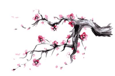 Sakura,Watercolor Spring blossoms