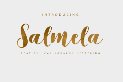 Salmela Script