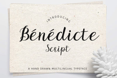 Benedicte Scipt