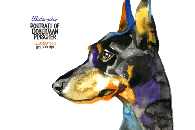 Watercolor Doberman Pinscher