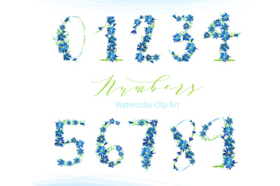 Flowers NUMBERS watercolor clipart