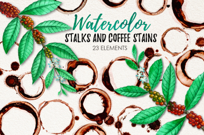 Watercolor Coffee Stains and Stalks