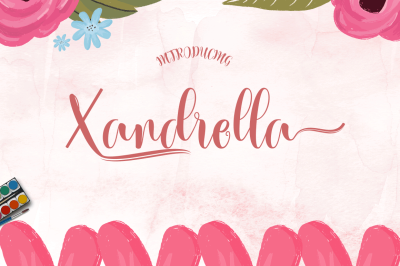 Xandrella (Limited time promotions)